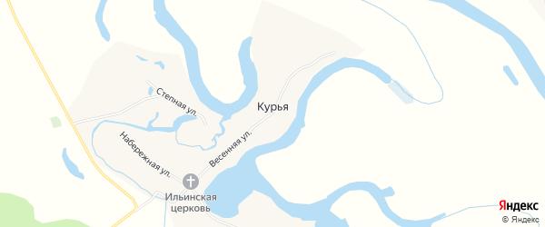 Карта села Курьи в Алтайском крае с улицами и номерами домов