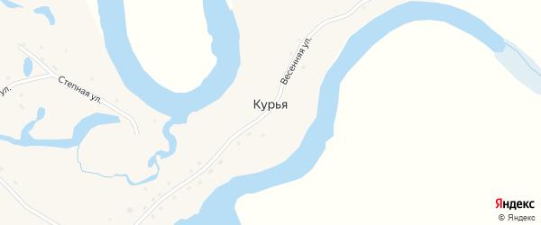 Весенняя улица на карте села Курьи с номерами домов
