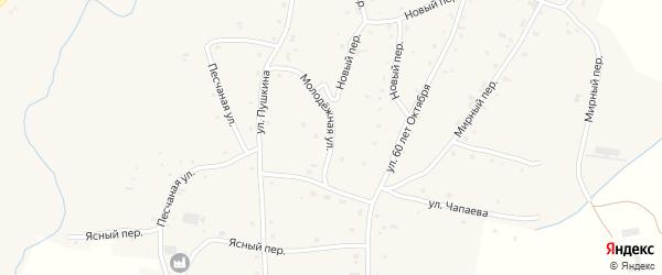 Молодежная улица на карте села Нижнекаменки с номерами домов