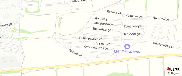 Виноградная улица на карте садового некоммерческого товарищества Мичуринца с номерами домов