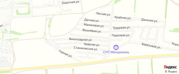 Мичуринская улица на карте садового некоммерческого товарищества Мичуринца с номерами домов