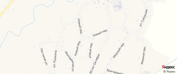 Новый переулок на карте села Нижнекаменки с номерами домов