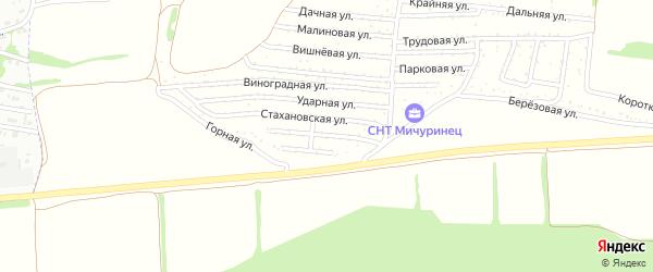 Улица Декабристов на карте садового некоммерческого товарищества Мичуринца с номерами домов
