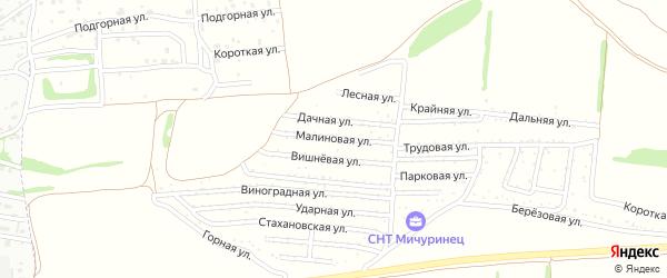 Малиновая улица на карте садового некоммерческого товарищества Мичуринца с номерами домов