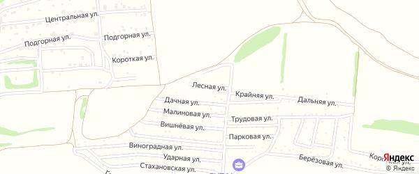 Лесная улица на карте садового некоммерческого товарищества Мичуринца с номерами домов