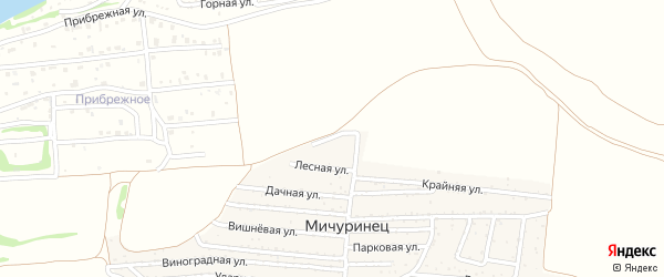 Улица У Водоема на карте садового некоммерческого товарищества Мичуринца с номерами домов