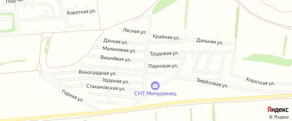 Калиновая улица на карте садового некоммерческого товарищества Мичуринца с номерами домов