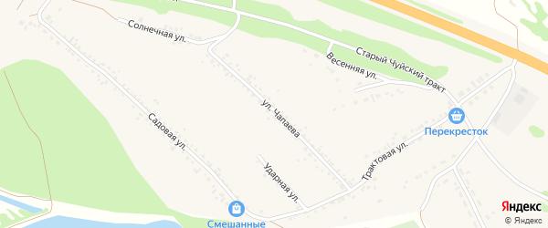 Улица Чапаева на карте Верха-Катунского села с номерами домов
