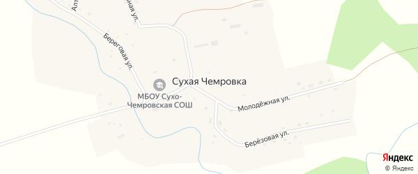 Береговая улица на карте села Сухой Чемровки с номерами домов