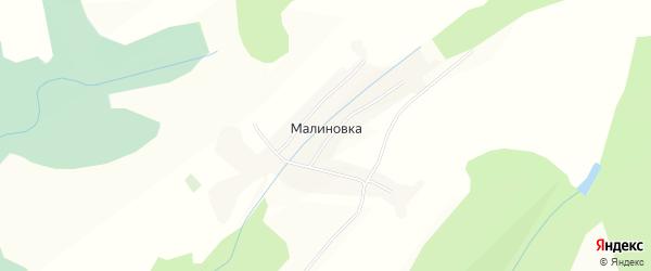 Карта поселка Малиновки в Алтайском крае с улицами и номерами домов