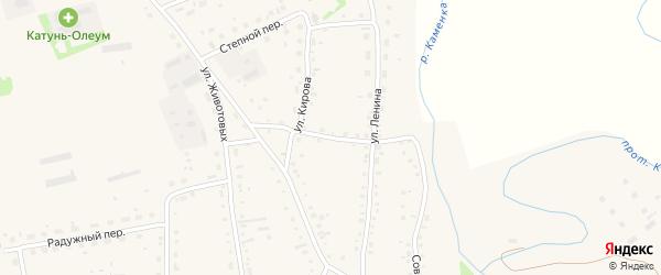 Северный переулок на карте Советского села с номерами домов