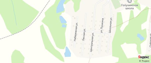 Набережная улица на карте станции Голухи с номерами домов