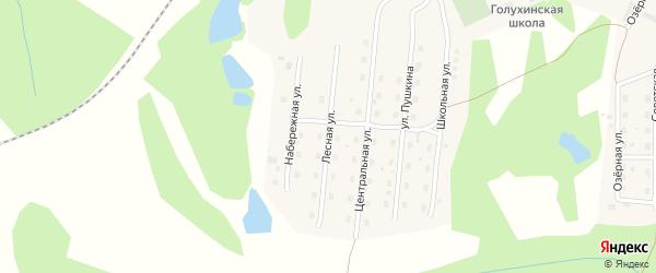 Лесная улица на карте станции Голухи с номерами домов
