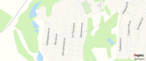 Улица Пушкина на карте станции Голухи с номерами домов