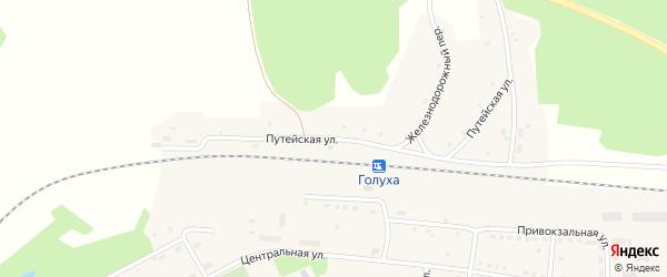Путейская улица на карте станции Голухи с номерами домов