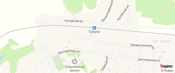 Привокзальная улица на карте станции Голухи с номерами домов