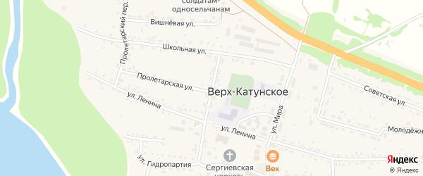 Новый переулок на карте Верха-Катунского села с номерами домов