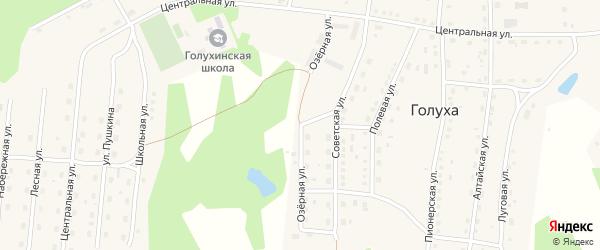 Озерная улица на карте станции Голухи с номерами домов