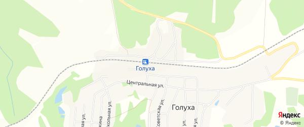 Карта станции Голухи в Алтайском крае с улицами и номерами домов
