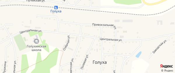 Центральная улица на карте села Инюшово с номерами домов