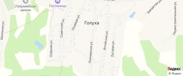 Пионерская улица на карте станции Голухи с номерами домов