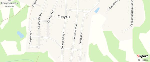 Алтайская улица на карте станции Голухи с номерами домов