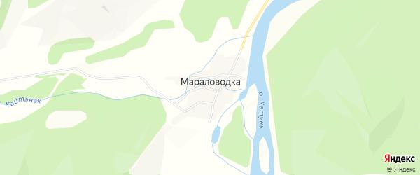 Карта поселка Мараловодки в Алтае с улицами и номерами домов