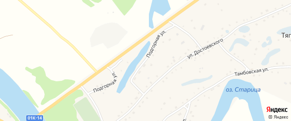 Подгорная улица на карте села Тягуна с номерами домов