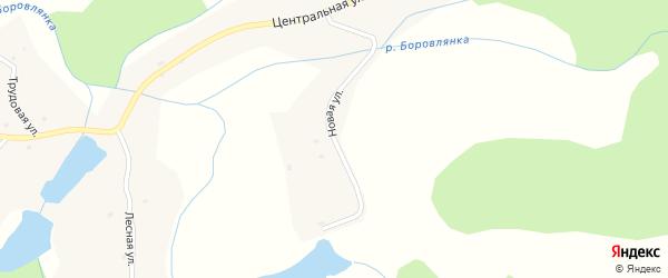 Новая улица на карте села Боровлянки с номерами домов