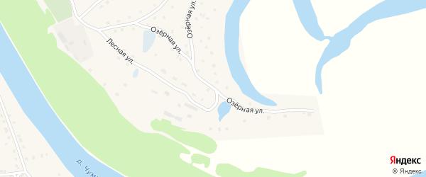 Озерная улица на карте села Тягуна с номерами домов