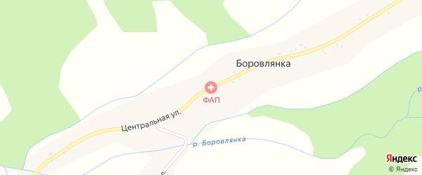 Центральная улица на карте села Боровлянки с номерами домов