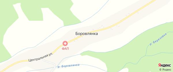 Трудовая улица на карте села Боровлянки с номерами домов