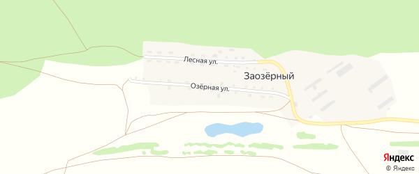 Озерная улица на карте Заозерного поселка с номерами домов