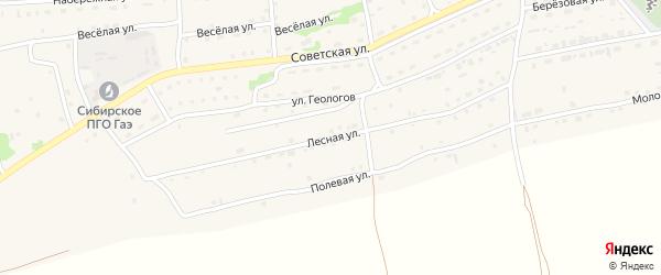 Лесная улица на карте Малоенисейского села с номерами домов