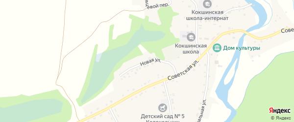 Новая улица на карте села Кокши с номерами домов