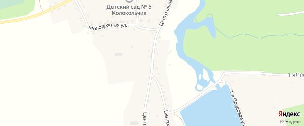 Центральная улица на карте села Кокши с номерами домов