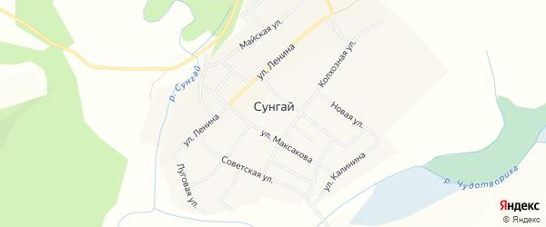 Карта села Сунгая в Алтайском крае с улицами и номерами домов