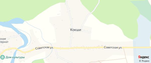Восточный переулок на карте села Кокши с номерами домов