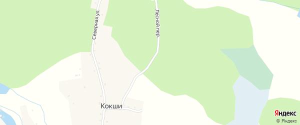 Лесной переулок на карте села Кокши с номерами домов