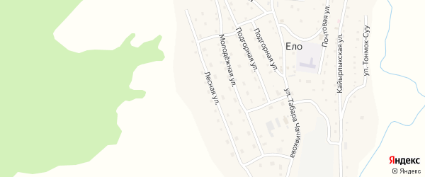 Лесная улица на карте села Ело с номерами домов