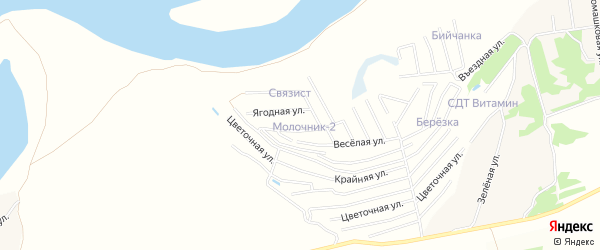 Карта территории сдт Молочника в Алтайском крае с улицами и номерами домов