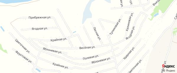 Плодовая улица на карте территории сдт Молочника с номерами домов