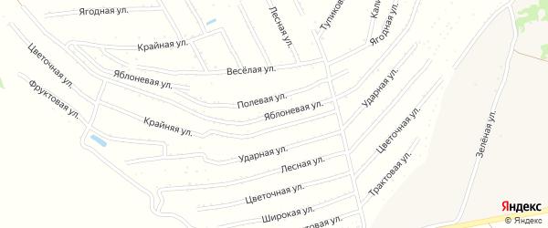 Яблоневая улица на карте садового некоммерческого товарищества Радуги с номерами домов