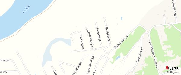 Цветочная улица на карте садового некоммерческого товарищества Бийчанки с номерами домов