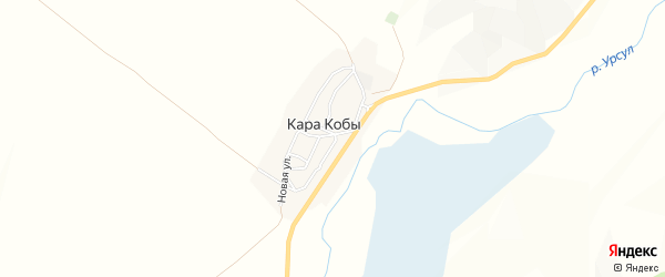 Карта села Кары Кобы в Алтае с улицами и номерами домов
