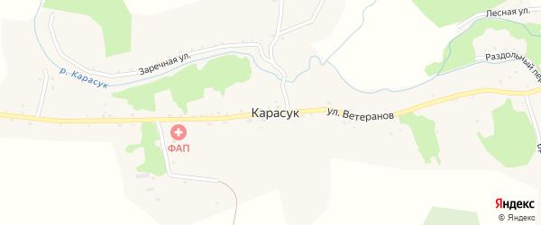 Улица Ветеранов на карте села Карасука с номерами домов