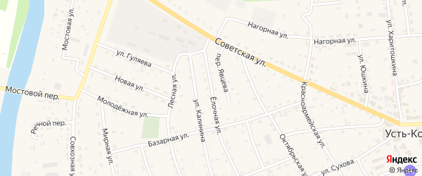 Елочная улица на карте села Усть-коксы с номерами домов