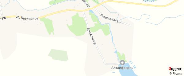 Бригадная улица на карте села Карасука с номерами домов