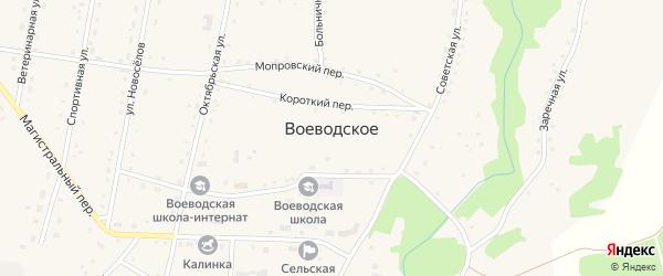 Луговая улица на карте Воеводского села с номерами домов