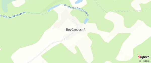 Карта Врублевского поселка в Алтайском крае с улицами и номерами домов